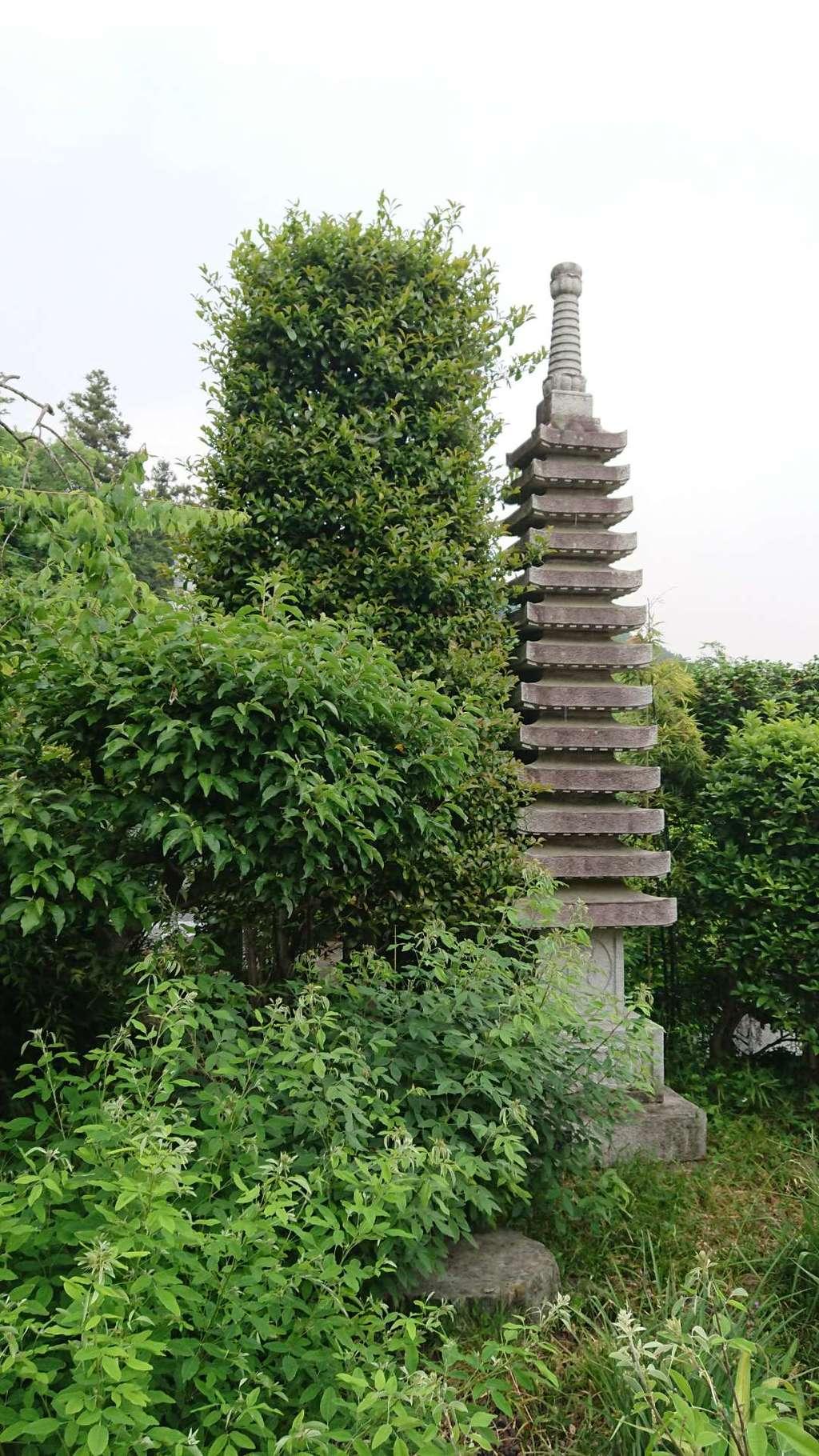 洞昌院の塔