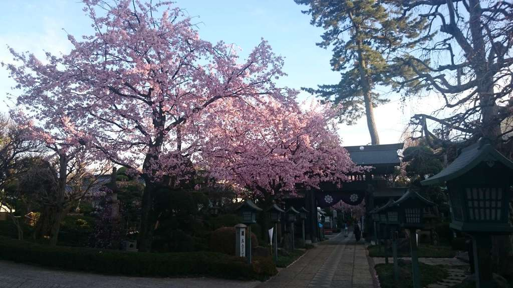 密藏院の景色