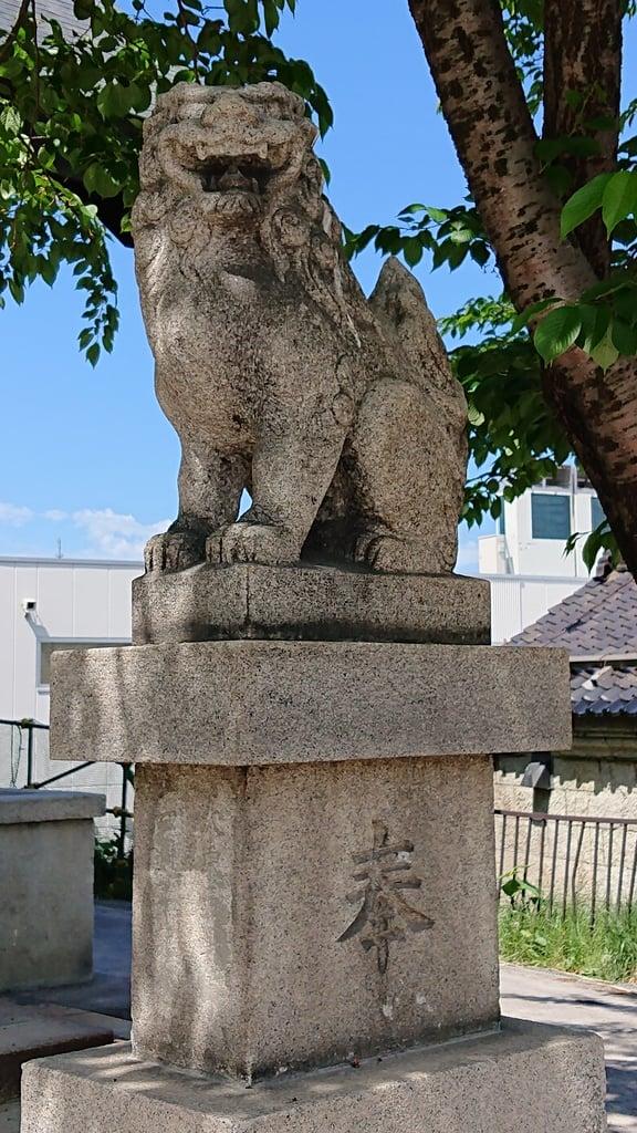 龍宮神社の狛犬