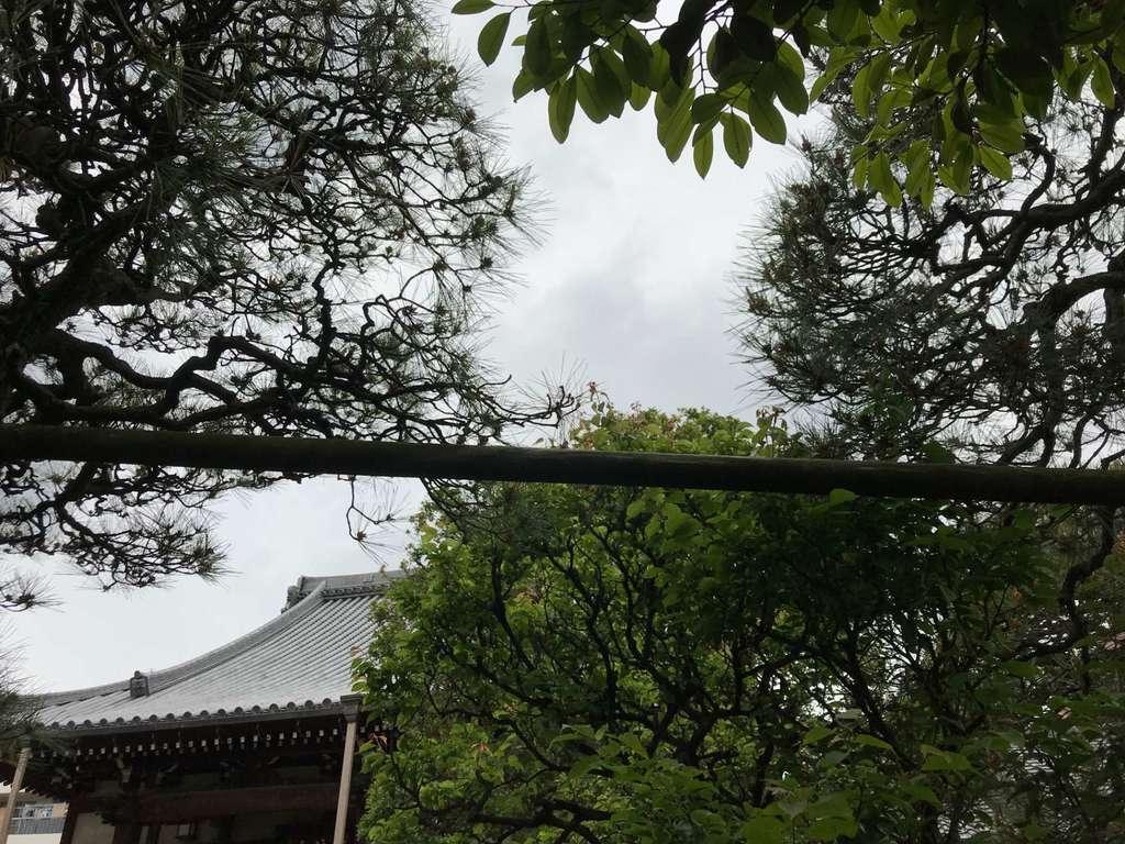 法立寺の自然