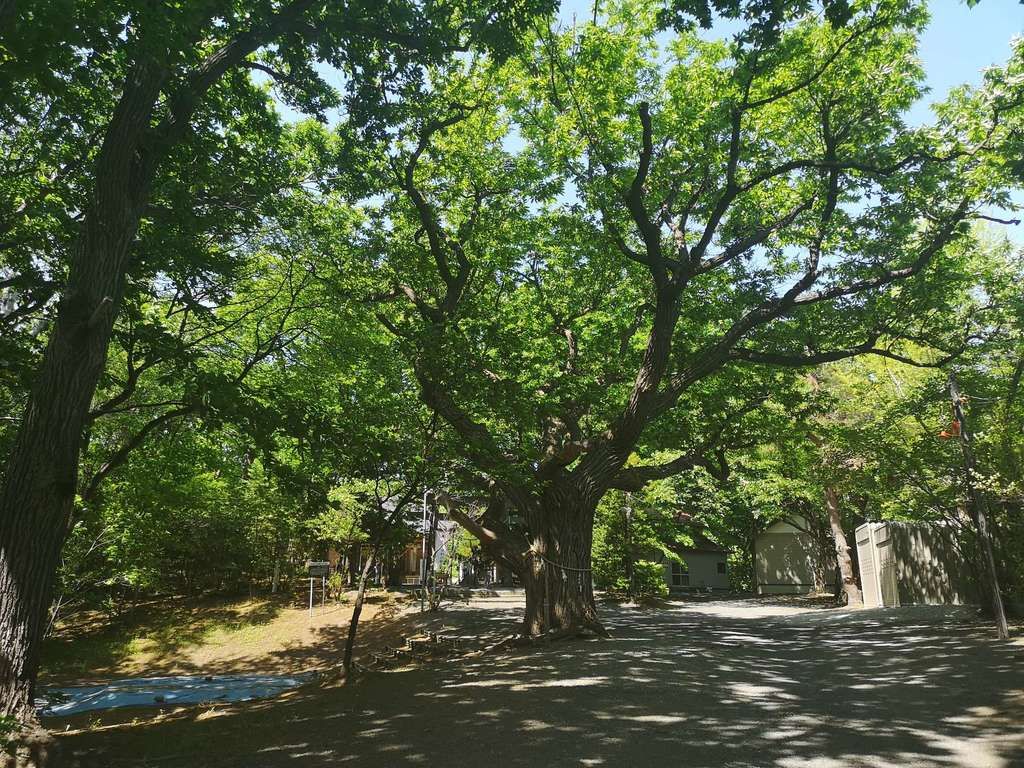 相馬神社の建物その他