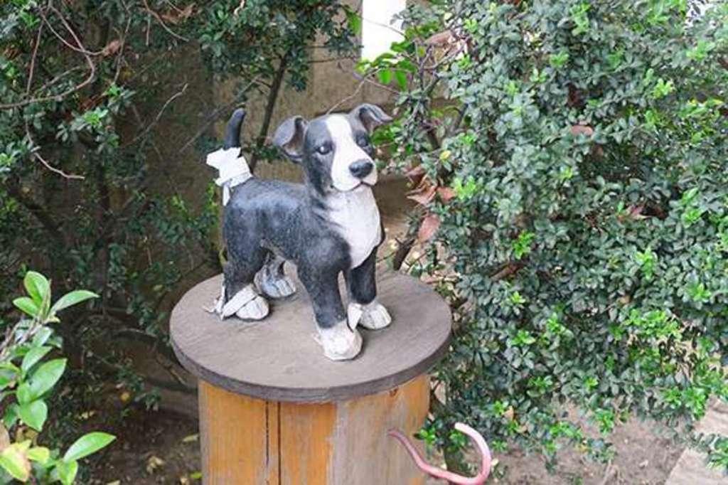 前川神社の狛犬