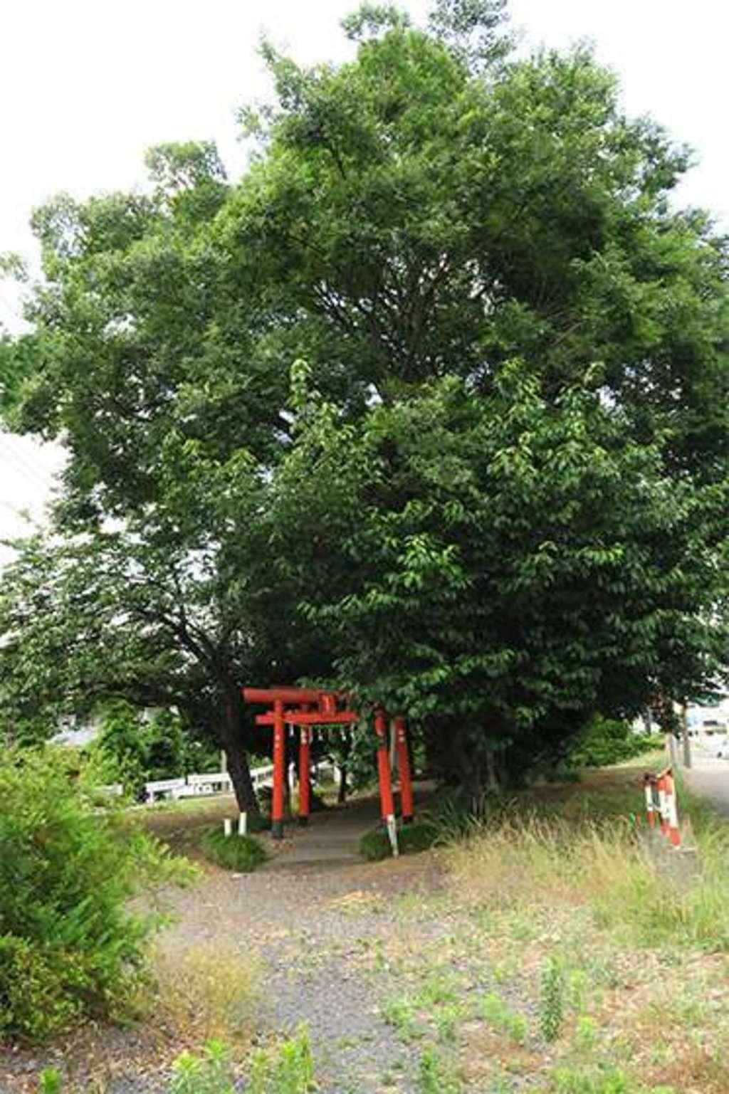 稲荷大明神(埼玉県)