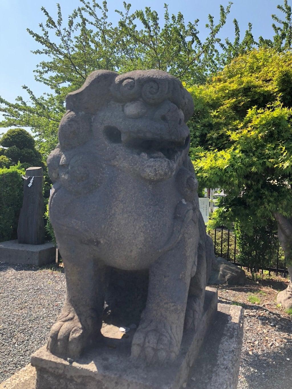 御前神社の狛犬
