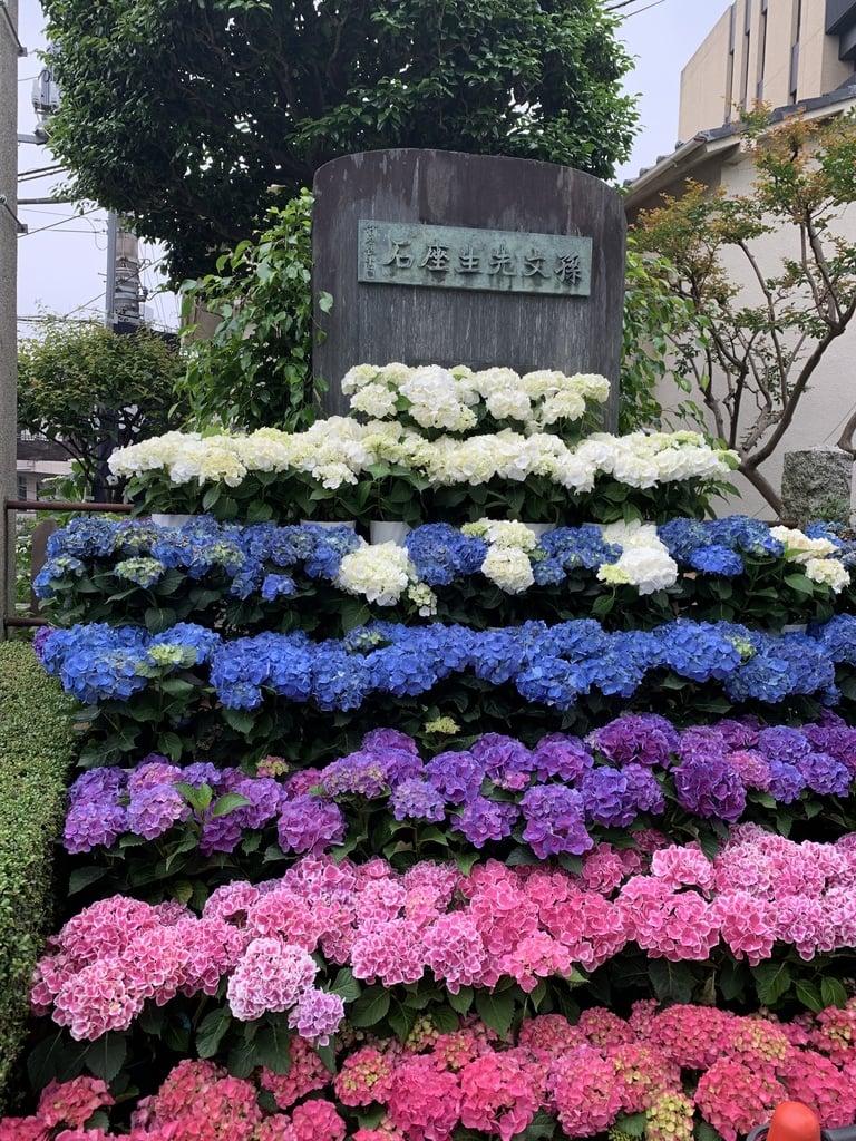 白山神社の庭園