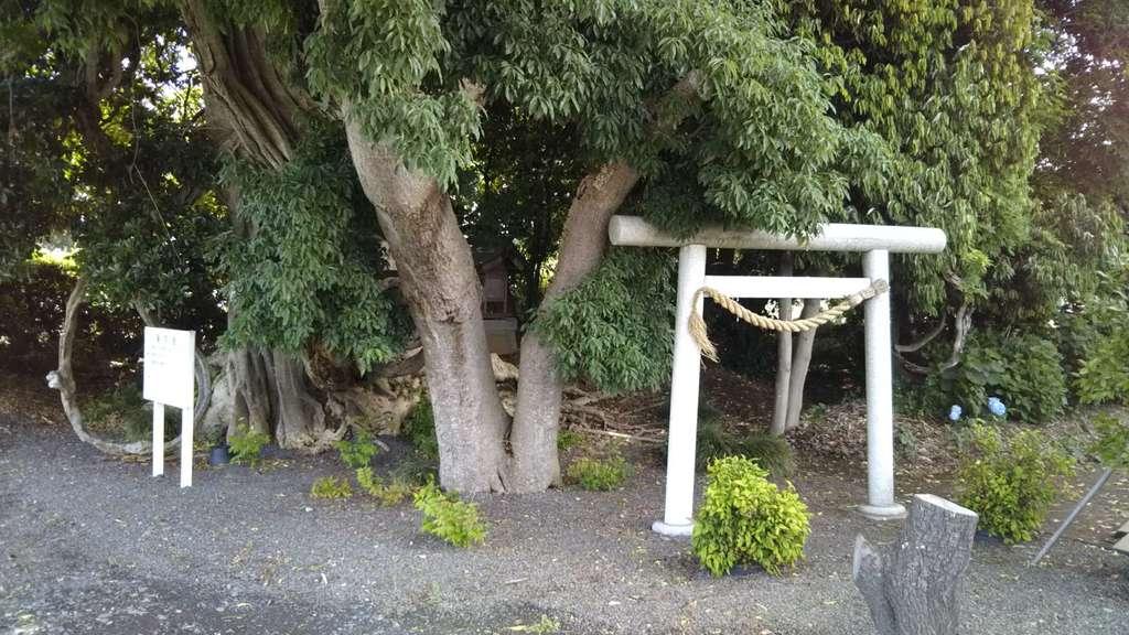神社(名称不明)の鳥居