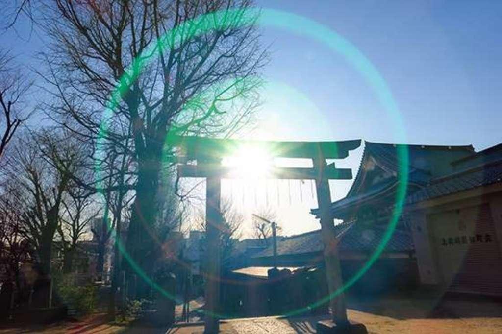 上田端八幡神社(東京都)