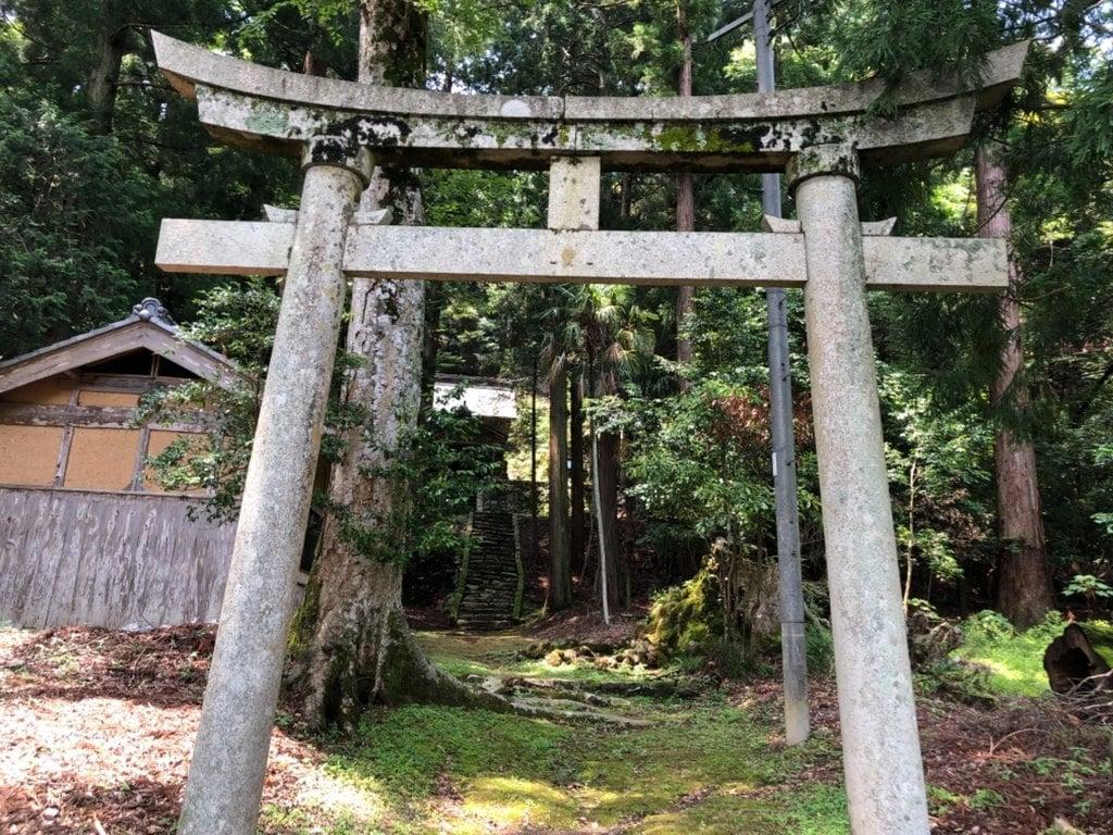 椎村神社の鳥居