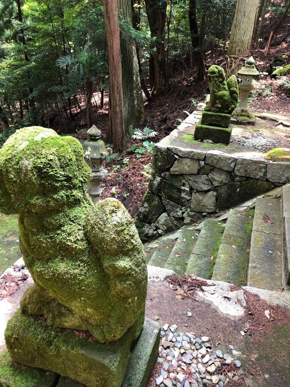 椎村神社の狛犬