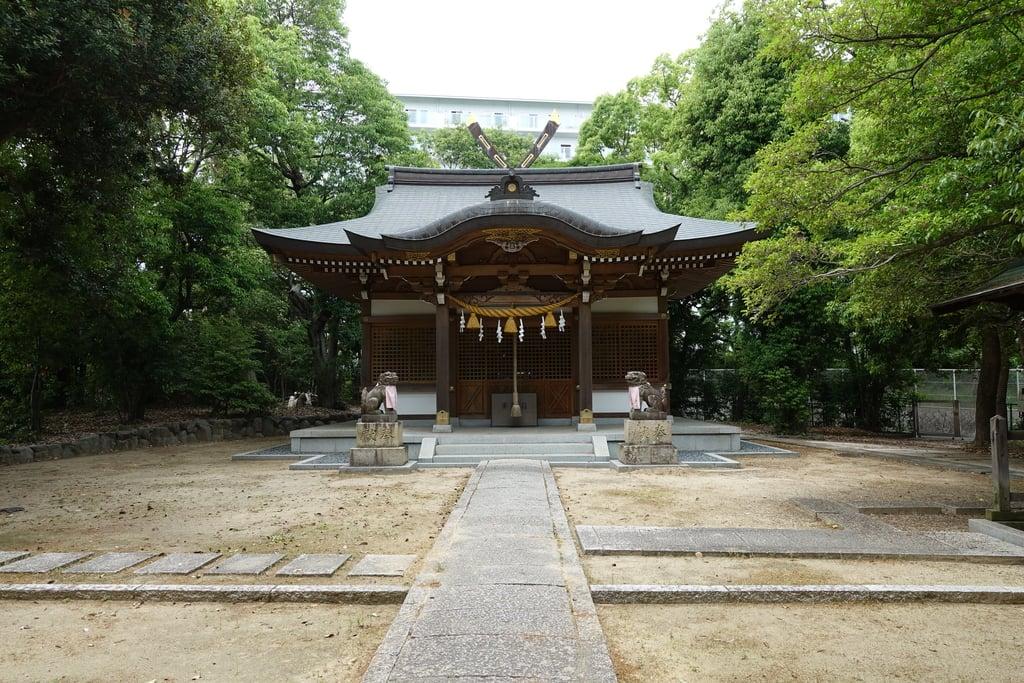 新家春日神社の本殿