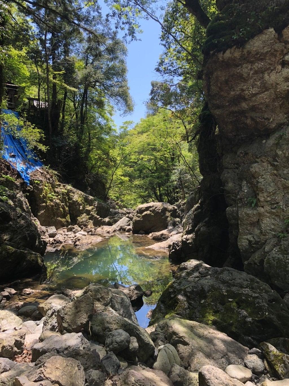 天岩戸神社の自然