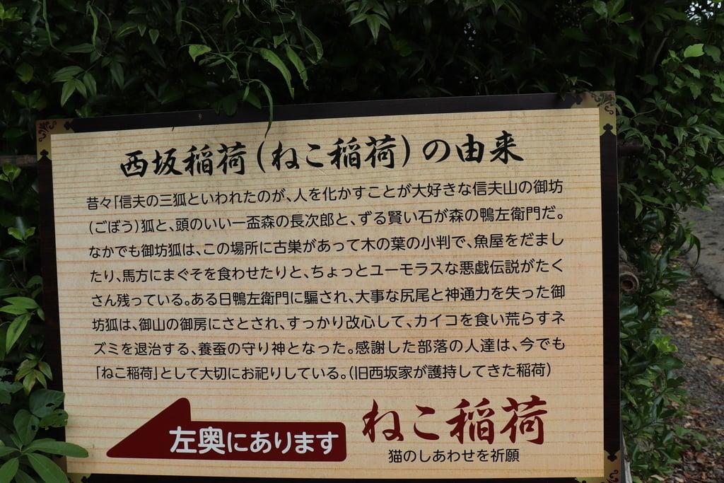 西坂ねこ稲荷神社の歴史