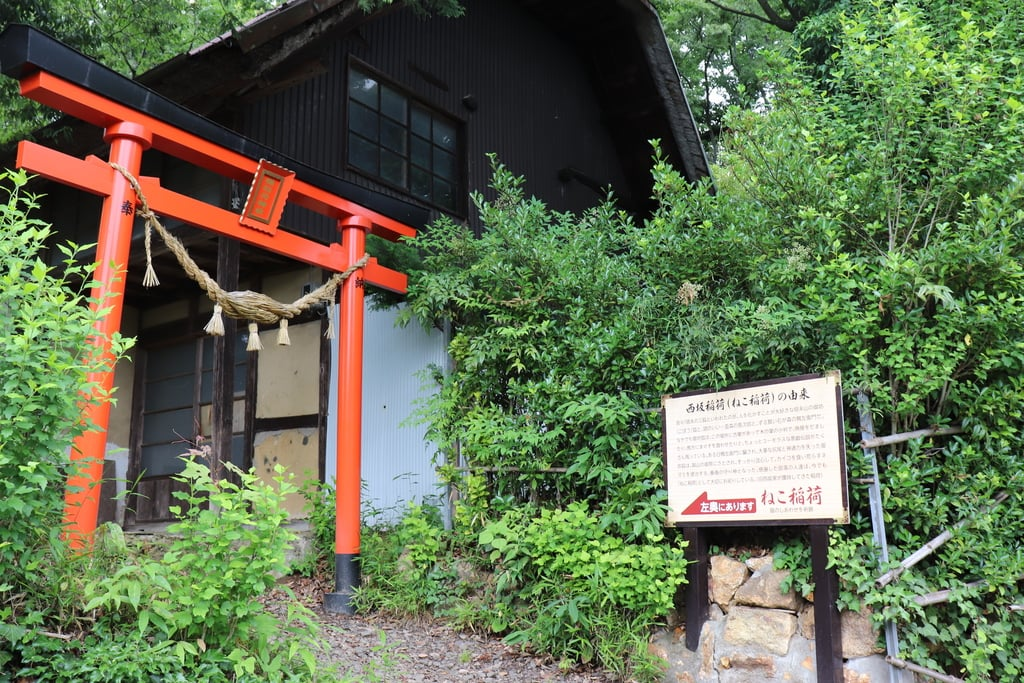 西坂ねこ稲荷神社の鳥居
