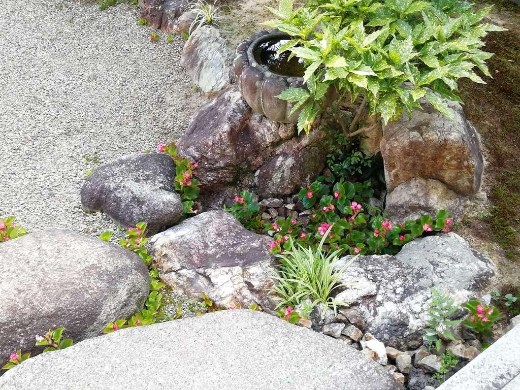 西方山極楽寺の庭園