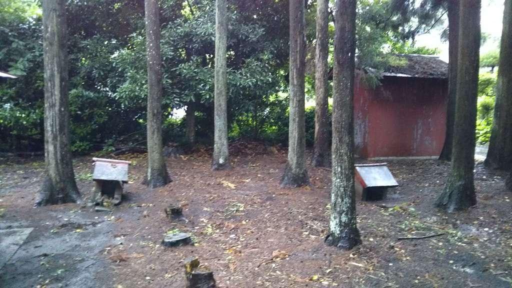 高田神社の末社