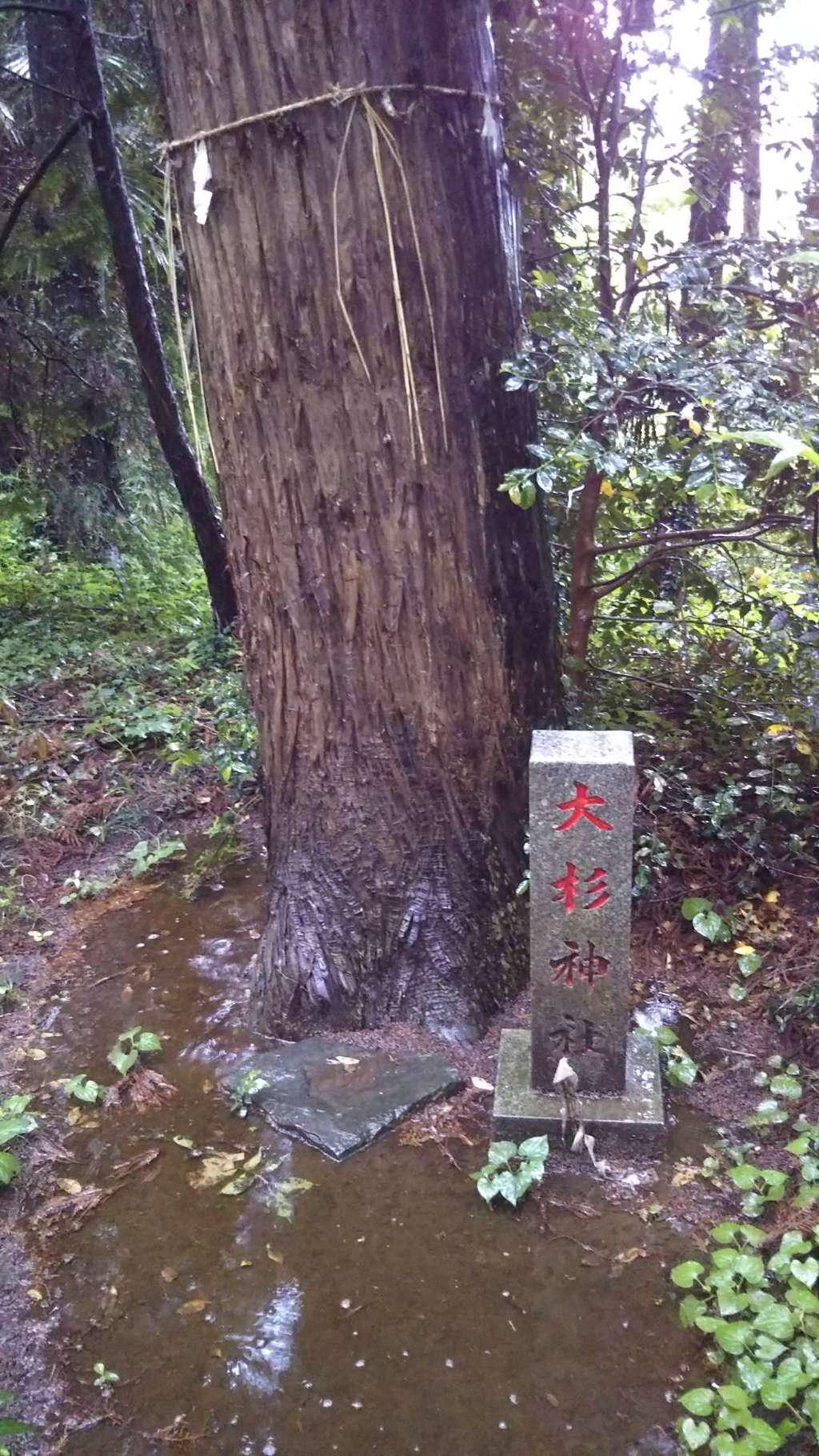 熱田神社のその他