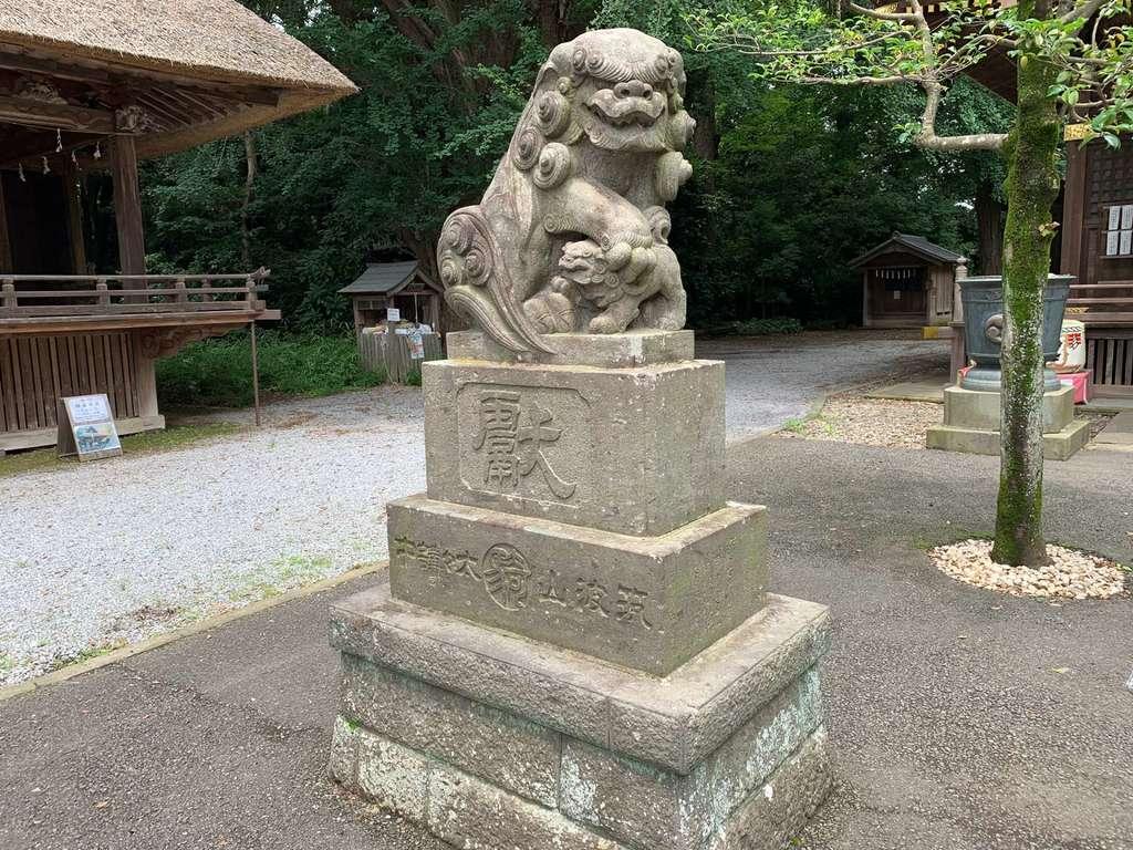 玉敷神社の狛犬