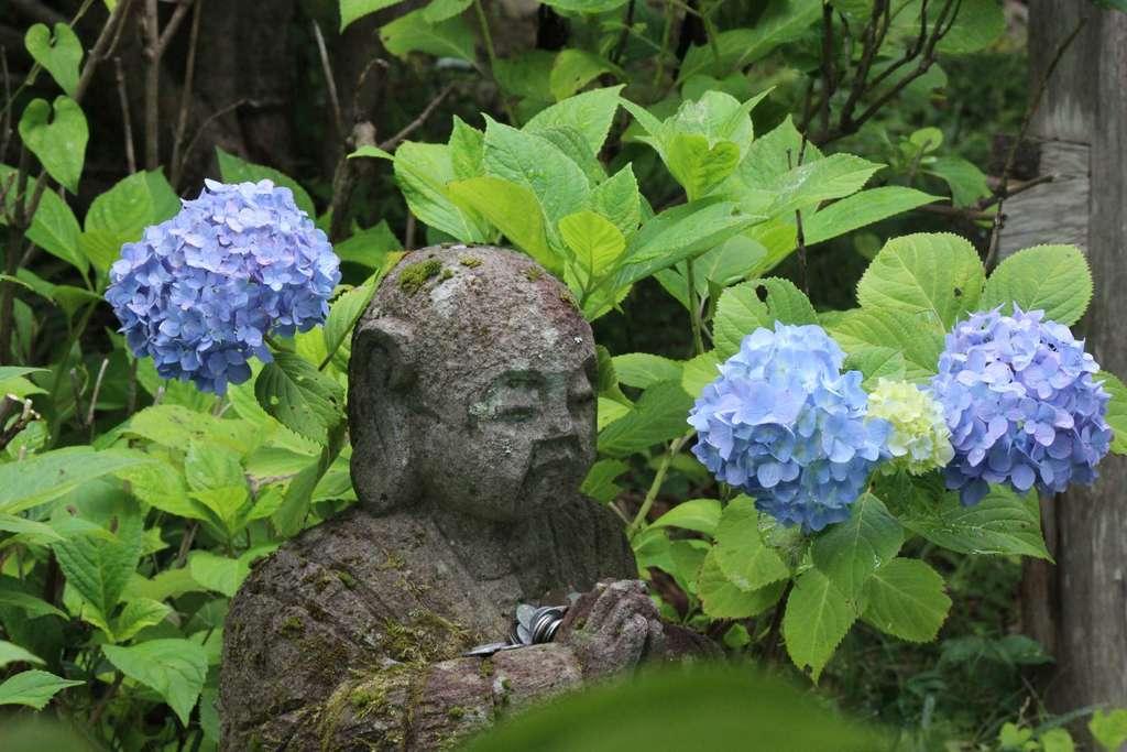 大法寺(長野県)