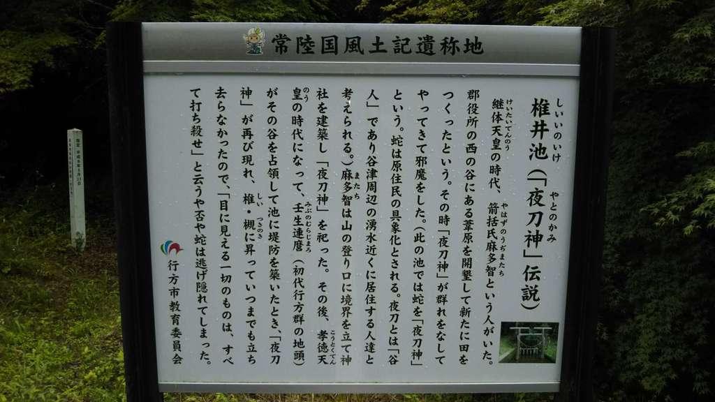 夜刀神社(愛宕神社境内社)の歴史