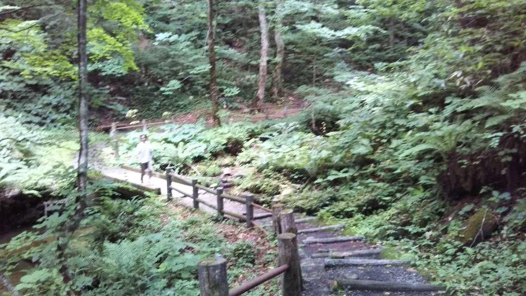 桜松神社の周辺