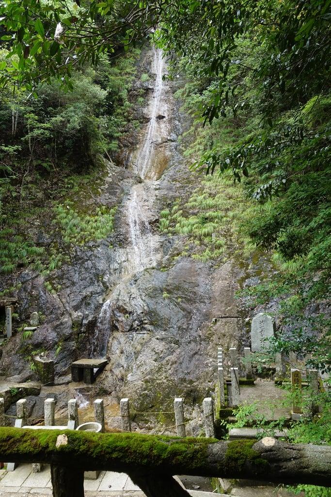 満願滝弁財天の自然