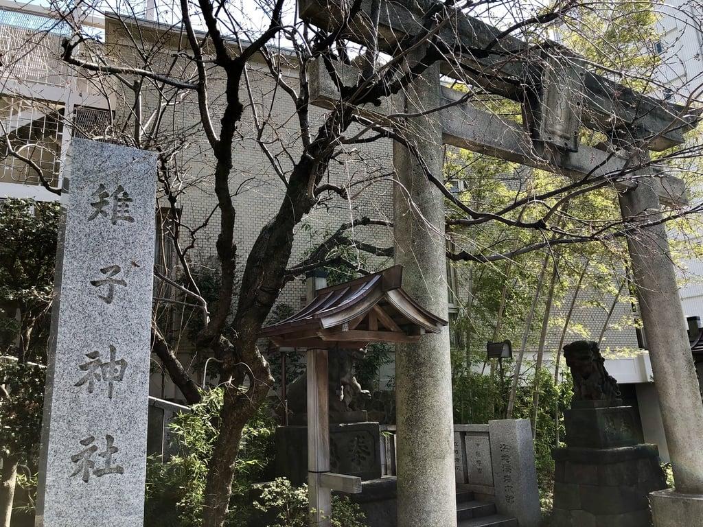 雉子神社の鳥居