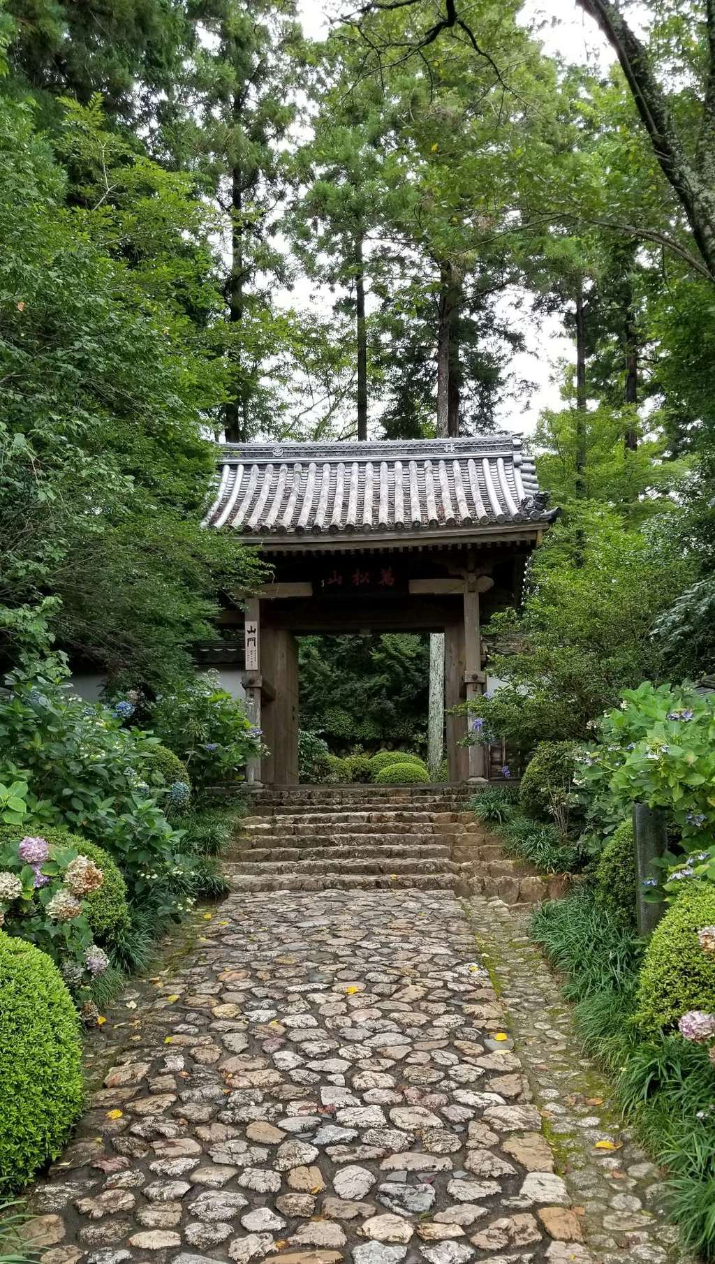 龍潭寺の山門