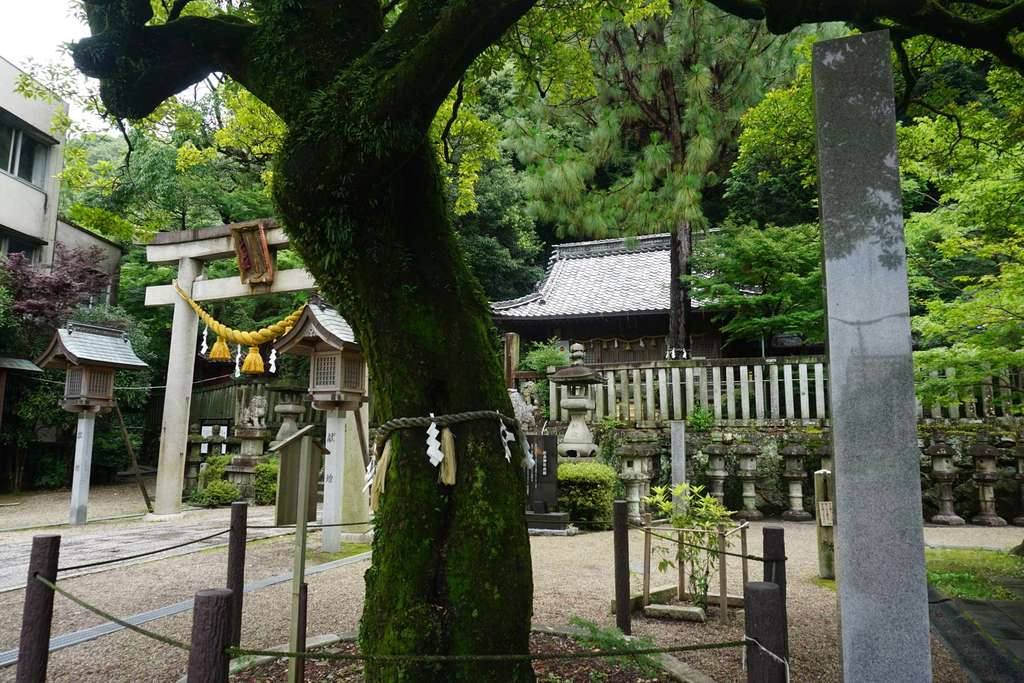 橿森神社(岐阜県)