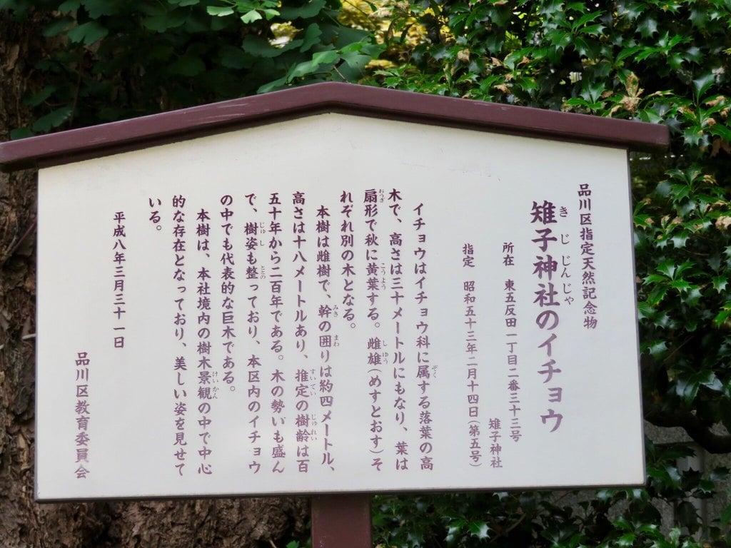 雉子神社の歴史