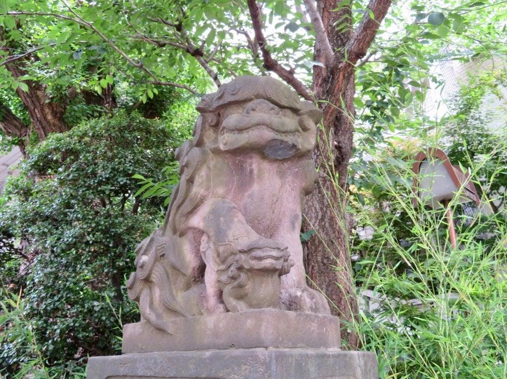 雉子神社の狛犬