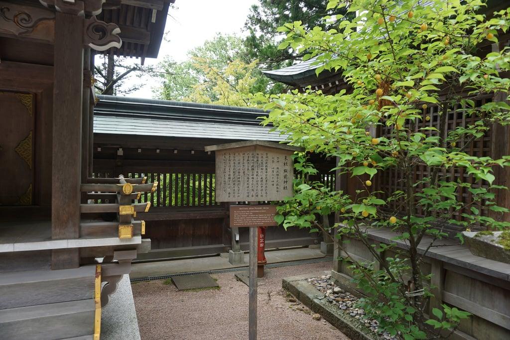 櫻山八幡宮の建物その他