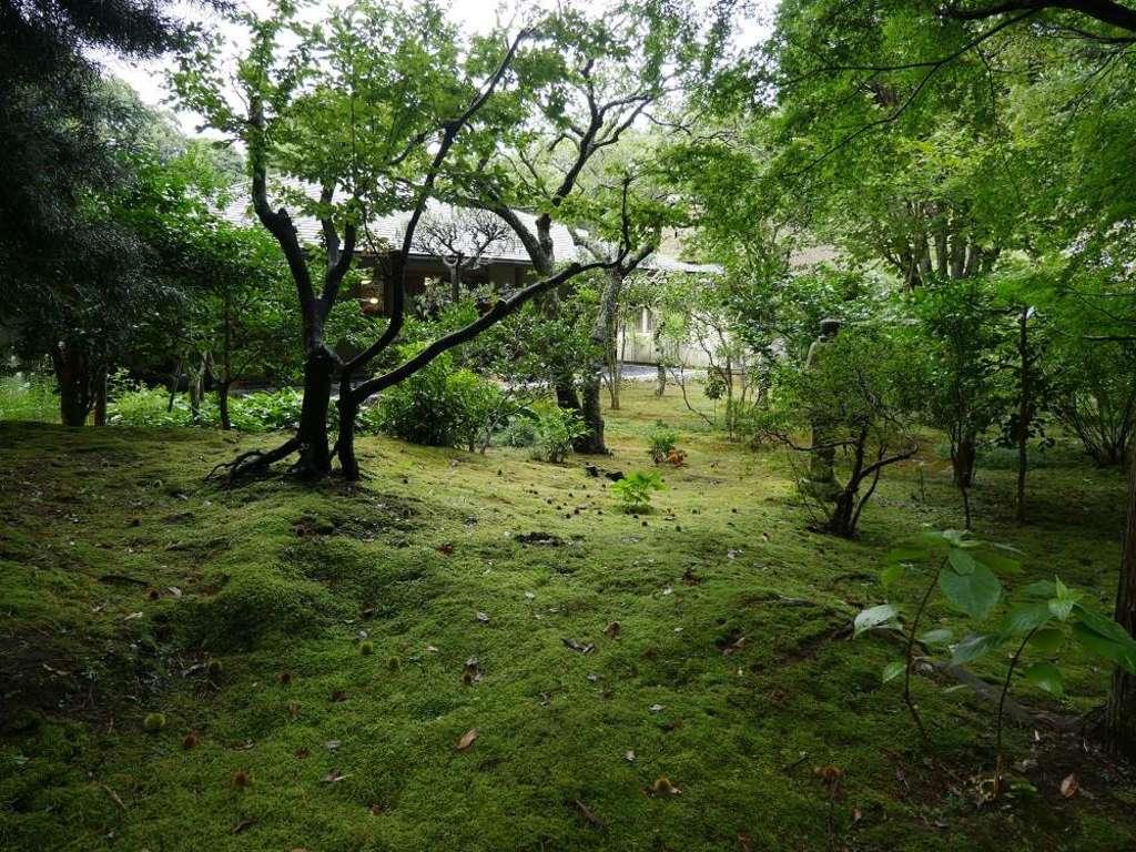 浄智寺(神奈川県)