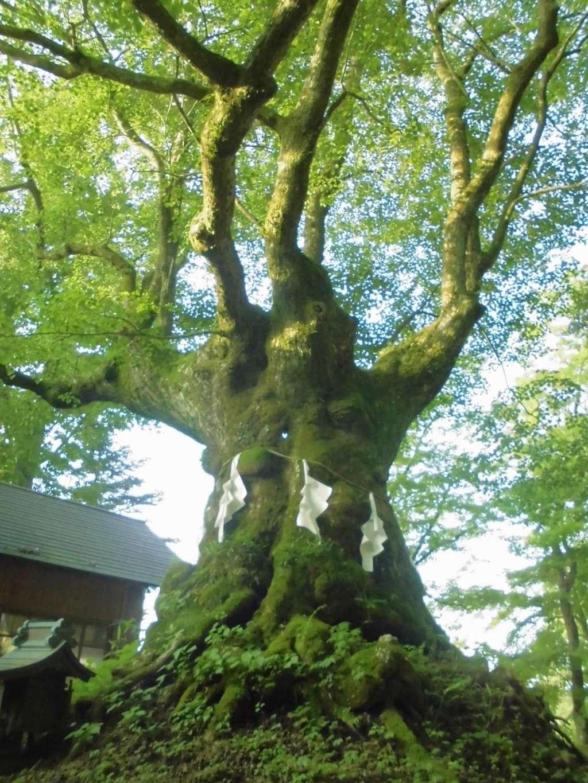 熊野皇大神社(長野県)