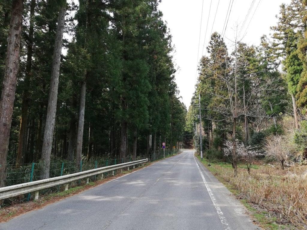 妙義神社の周辺