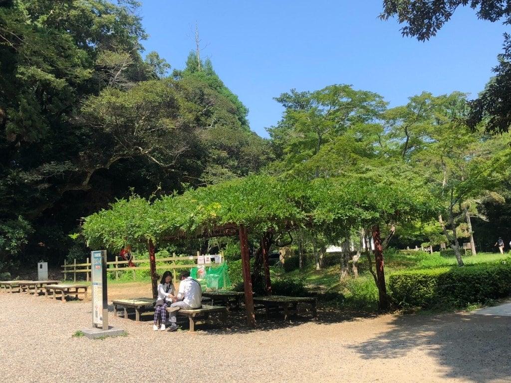 鹿島神宮の庭園