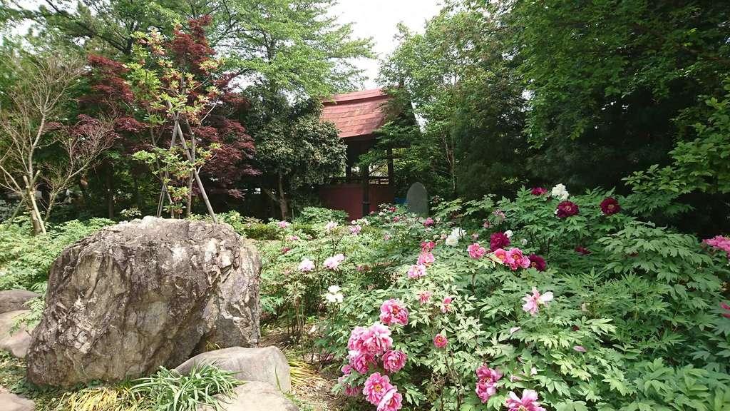 龍真寺(群馬県)