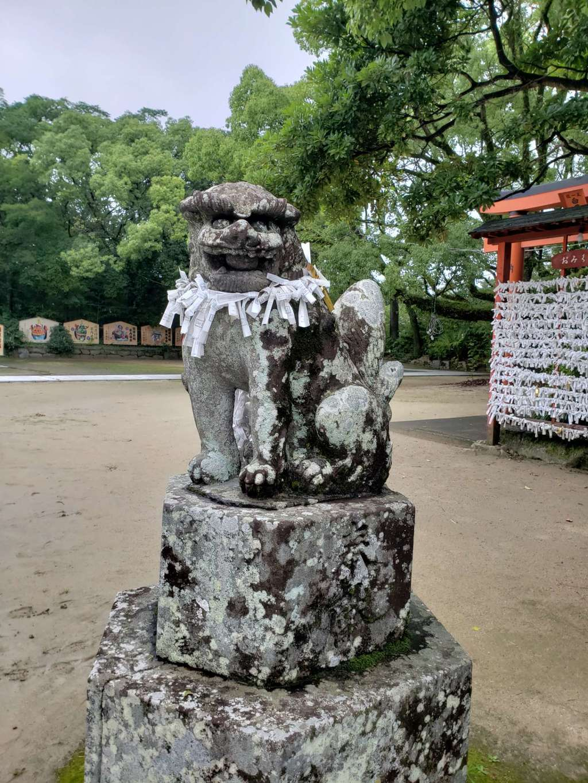 唐津神社の狛犬