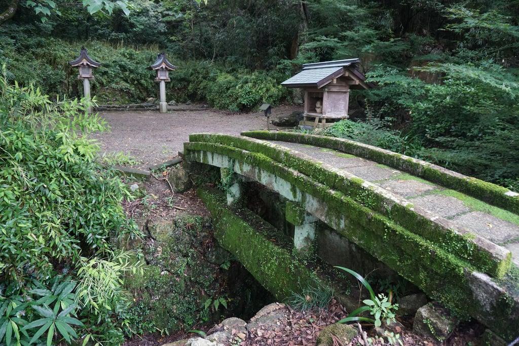 岐阜護国神社の建物その他
