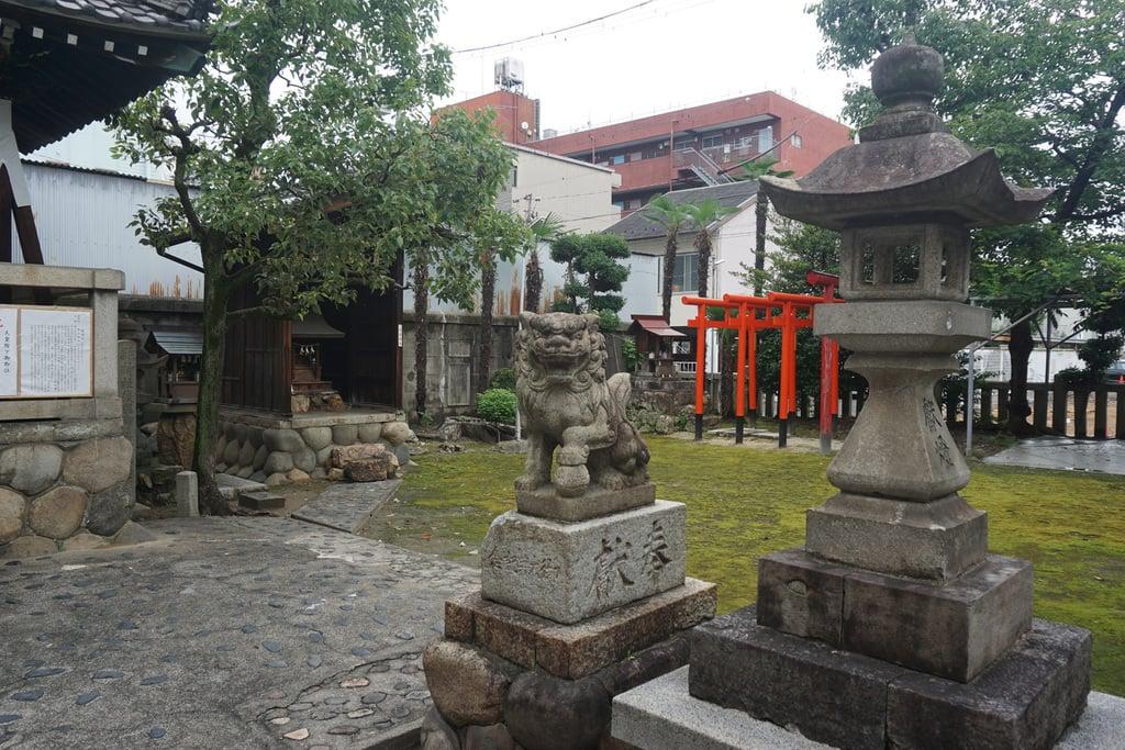 縣神社の狛犬