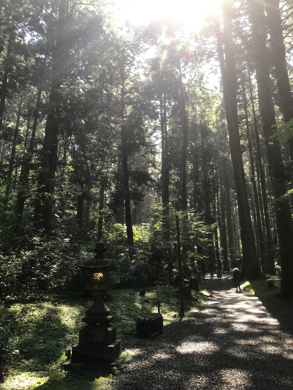 御岩神社の自然