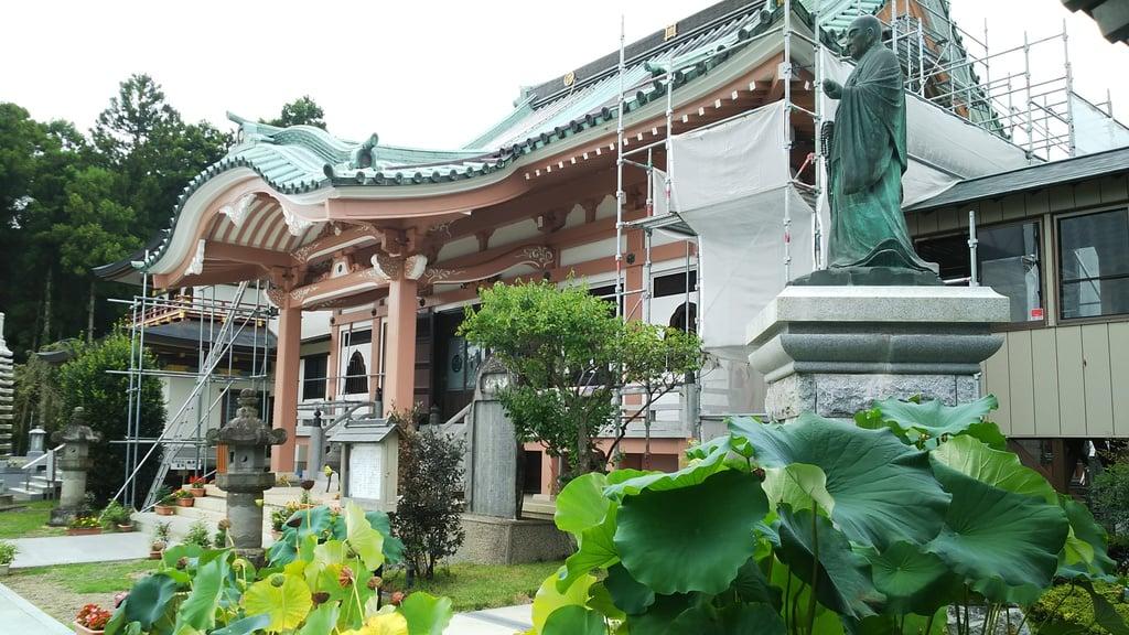 本山 久昌寺の自然