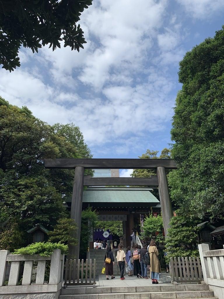 東京大神宮の鳥居