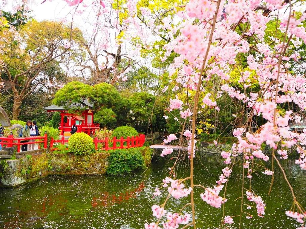 三嶋大社の庭園
