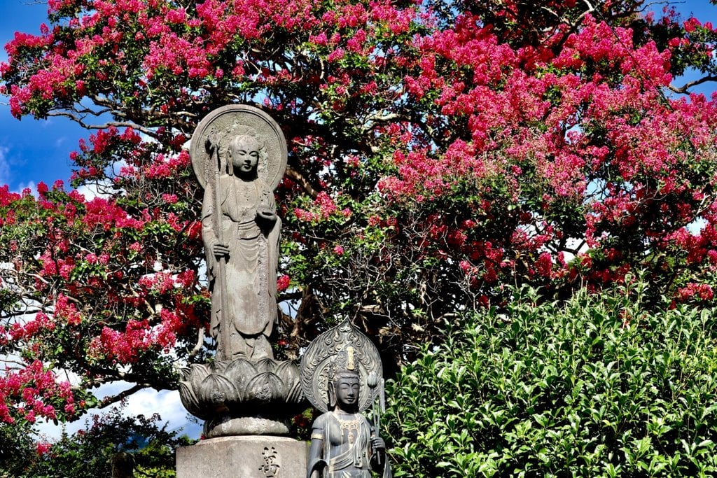 大雄院の仏像