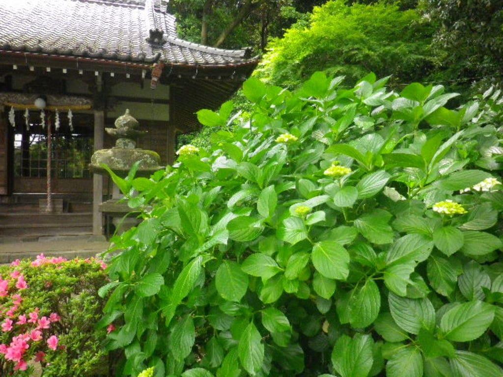 蛇苦止明神(蛇苦止堂)の庭園
