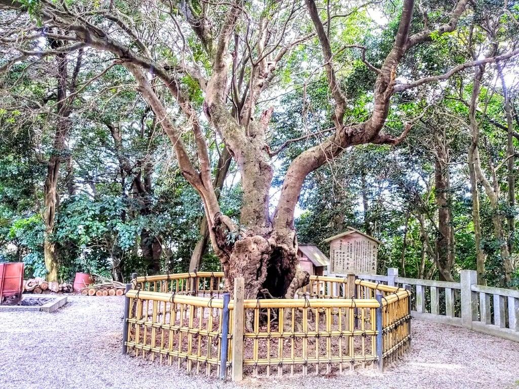 八幡神社(草木八幡社)の庭園