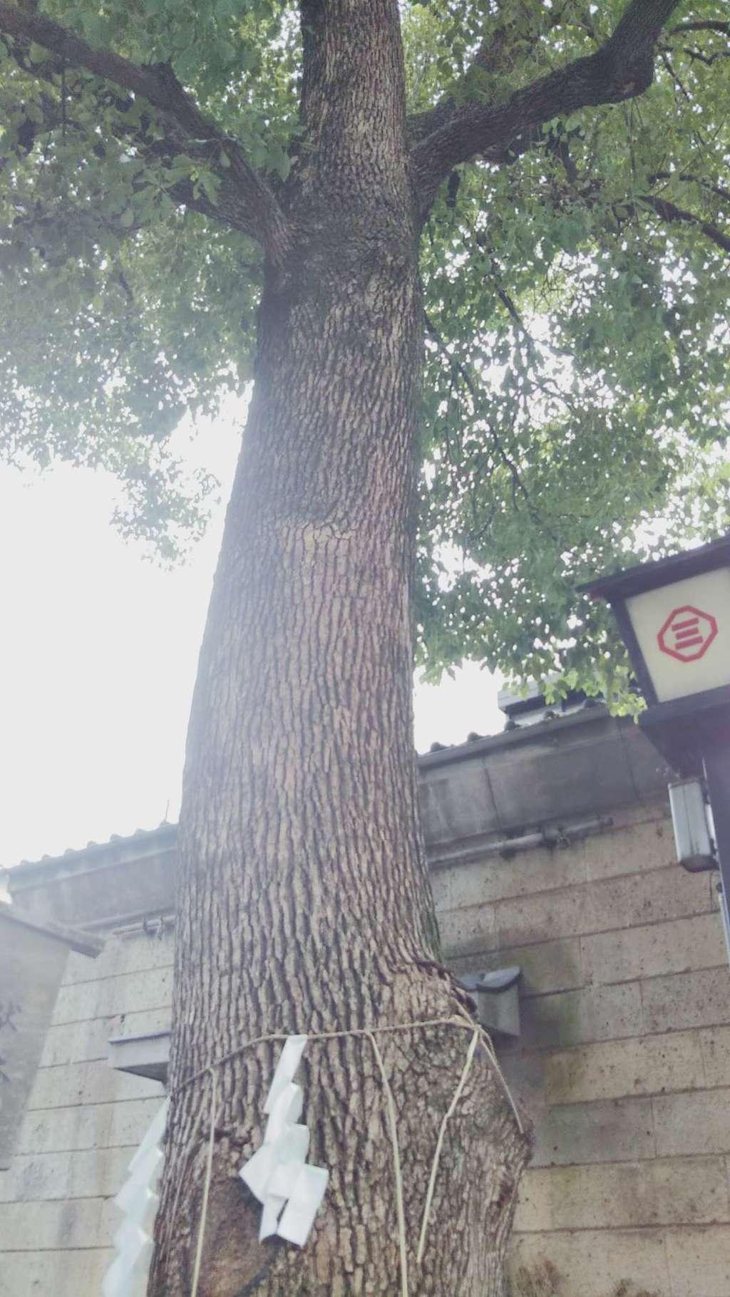 三島神社(東京都)