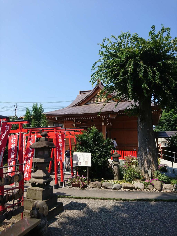 於菊稲荷神社の建物その他