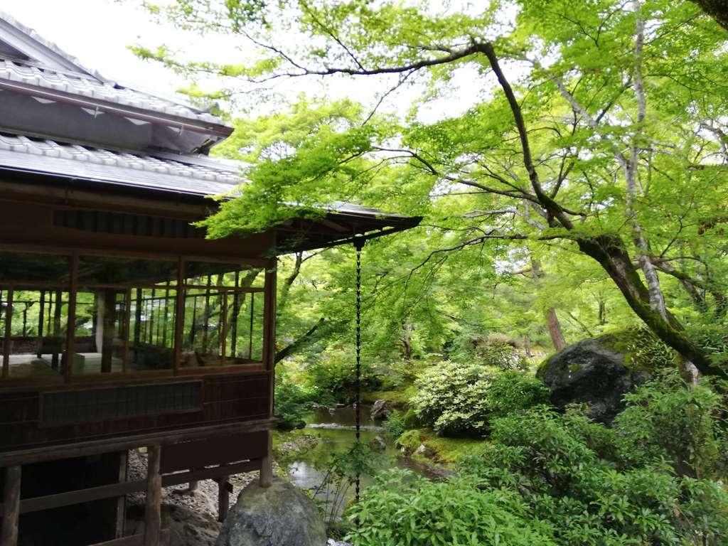 宝厳院(京都府)