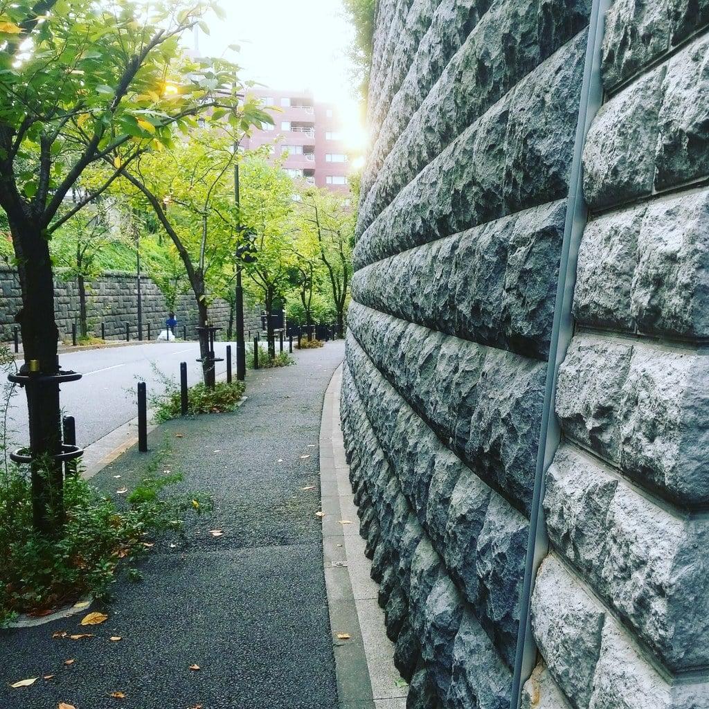 日枝神社の周辺